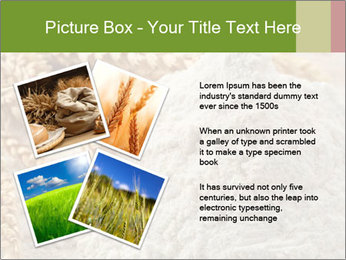 0000094229 PowerPoint Templates - Slide 23