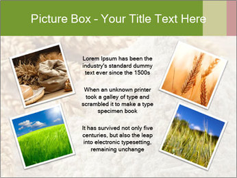 0000094229 PowerPoint Templates - Slide 24