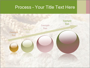 0000094229 PowerPoint Templates - Slide 87