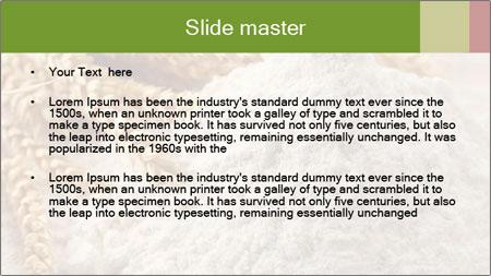 0000094229 PowerPoint Template - Slide 2