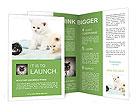 0000094240 Brochure Templates