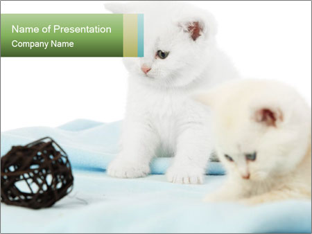0000094240 PowerPoint Templates