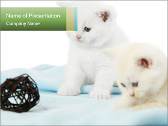 0000094240 PowerPoint Templates - Slide 1