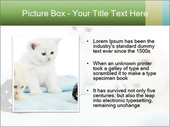 0000094240 PowerPoint Templates - Slide 13
