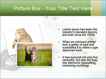 0000094240 PowerPoint Templates - Slide 20