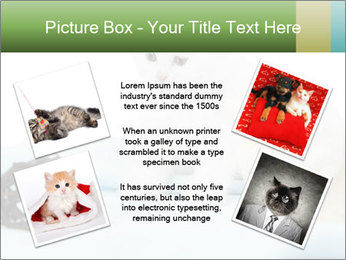 0000094240 PowerPoint Templates - Slide 24