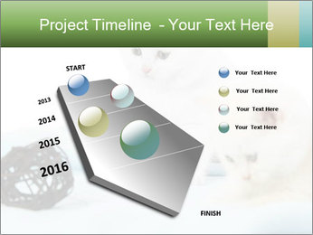 0000094240 PowerPoint Templates - Slide 26