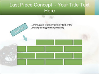 0000094240 PowerPoint Templates - Slide 46