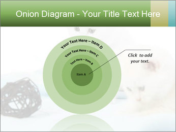 0000094240 PowerPoint Templates - Slide 61