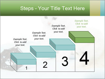 0000094240 PowerPoint Templates - Slide 64