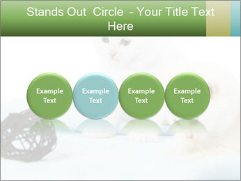 0000094240 PowerPoint Templates - Slide 76