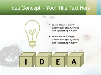 0000094240 PowerPoint Templates - Slide 80