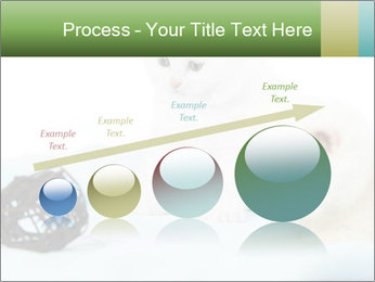 0000094240 PowerPoint Templates - Slide 87