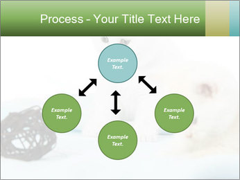 0000094240 PowerPoint Templates - Slide 91