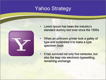 0000094242 PowerPoint Template - Slide 11