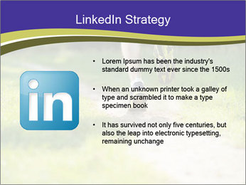 0000094242 PowerPoint Template - Slide 12
