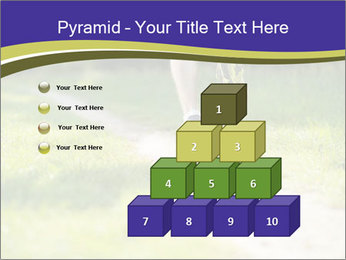 0000094242 PowerPoint Templates - Slide 31