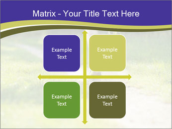 0000094242 PowerPoint Template - Slide 37