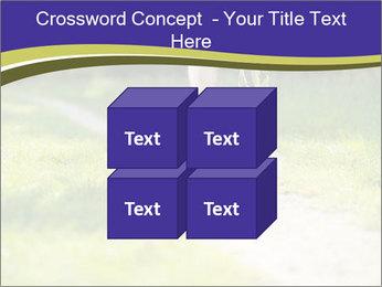 0000094242 PowerPoint Template - Slide 39