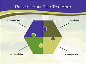0000094242 PowerPoint Templates - Slide 40