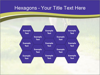 0000094242 PowerPoint Templates - Slide 44