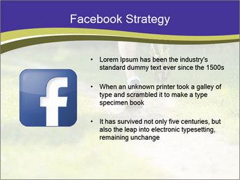 0000094242 PowerPoint Template - Slide 6