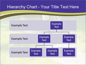 0000094242 PowerPoint Template - Slide 67