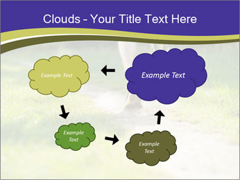 0000094242 PowerPoint Template - Slide 72