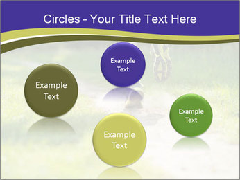 0000094242 PowerPoint Templates - Slide 77