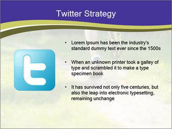 0000094242 PowerPoint Template - Slide 9