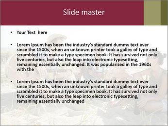 0000094243 PowerPoint Templates - Slide 2