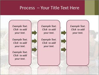 0000094243 PowerPoint Templates - Slide 86
