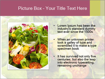 0000094255 PowerPoint Template - Slide 13