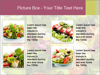 0000094255 PowerPoint Template - Slide 14
