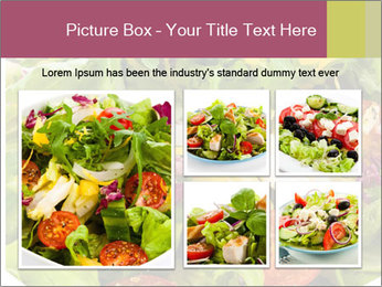 0000094255 PowerPoint Template - Slide 19