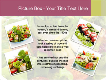 0000094255 PowerPoint Template - Slide 24