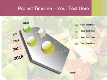 0000094255 PowerPoint Template - Slide 26
