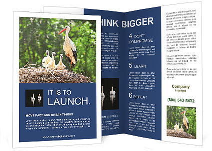 0000094256 Brochure Template