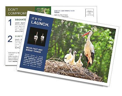 0000094256 Postcard Templates