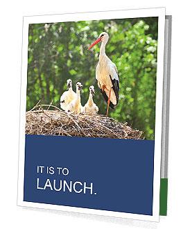 0000094256 Presentation Folder