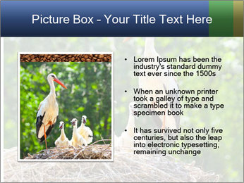 0000094256 PowerPoint Templates - Slide 13