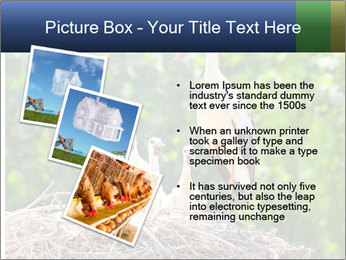 0000094256 PowerPoint Templates - Slide 17