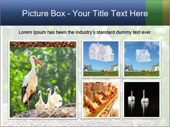 0000094256 PowerPoint Templates - Slide 19