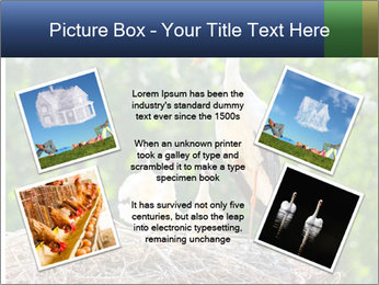 0000094256 PowerPoint Templates - Slide 24