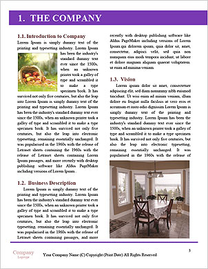 0000094258 Word Template - Page 3