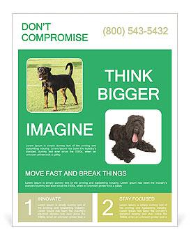 0000094259 Flyer Template
