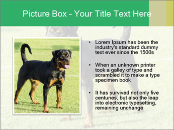 0000094259 PowerPoint Templates - Slide 13