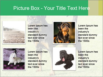 0000094259 PowerPoint Templates - Slide 14