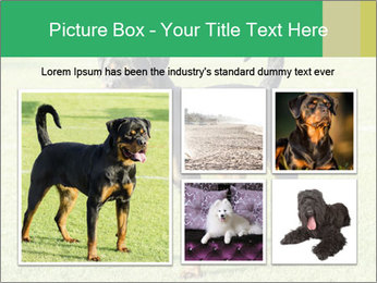 0000094259 PowerPoint Templates - Slide 19