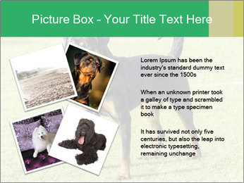 0000094259 PowerPoint Templates - Slide 23
